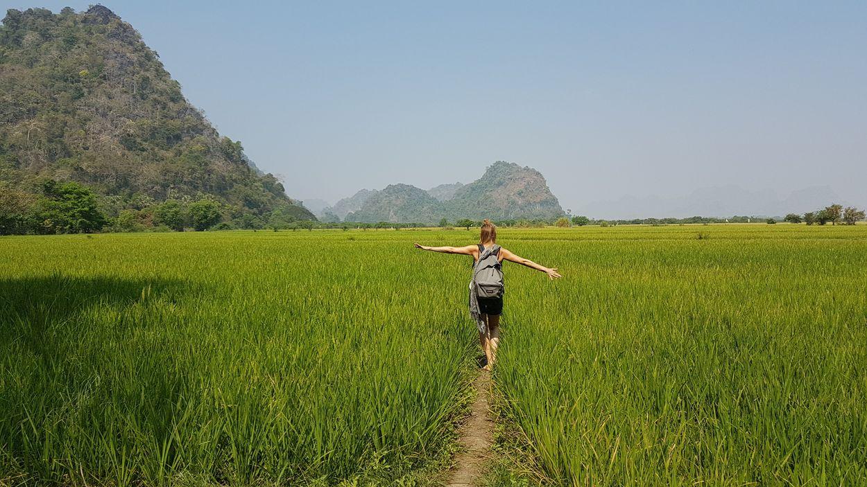 Sandy in rijstveld Myanmar