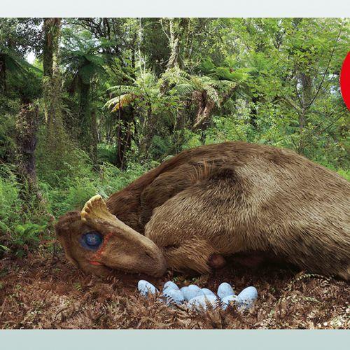 Afbeelding van Maak kans op bioscoopkaarten voor de spectaculaire grootbeeld film Dino's van de Zuidpool